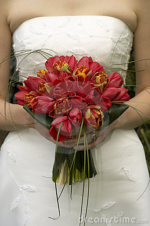 Free Bridal Bouquet Tulips Stock Photography - 119632