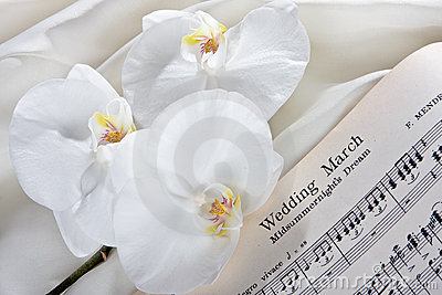 Bridal orchids