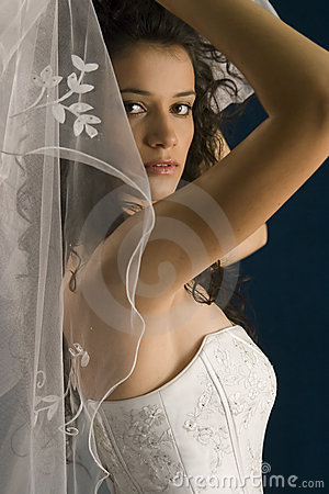 Free Bride Royalty Free Stock Images - 2014119
