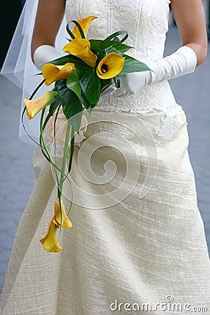 Free Bride Royalty Free Stock Image - 398946