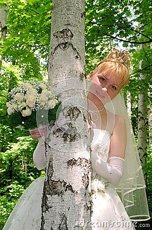 Bride 6
