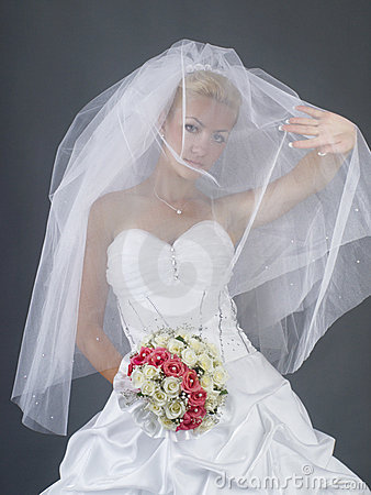 Free Bride Royalty Free Stock Photography - 6467717