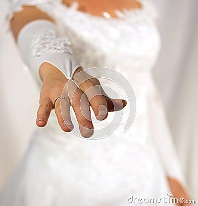 Free Bride Stock Photography - 814272