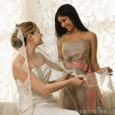 Free Bride And Bridesmaid Stock Photo - 2543010