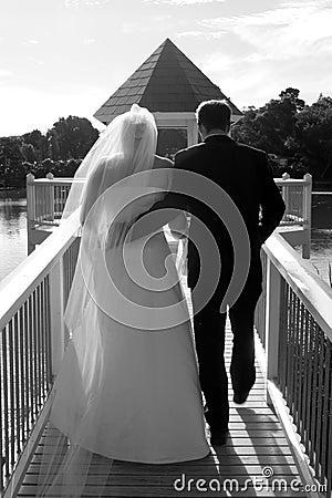 Free Bride And Groom Stock Photo - 2202570