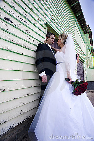 Free Bride And Groom Royalty Free Stock Images - 3296089