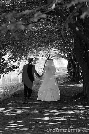 Free Bride And Groom In The Park Stock Images - 1978124