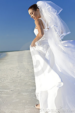 Free Bride At Beach Wedding Stock Photography - 20391142
