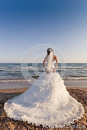 Bride at the beach backshot