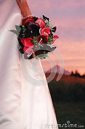 Free Bride & Bouquet Stock Photo - 543820