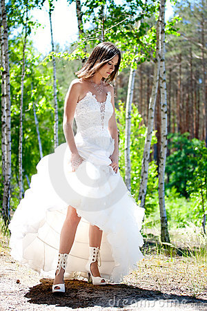 Bride with dark-brown hair