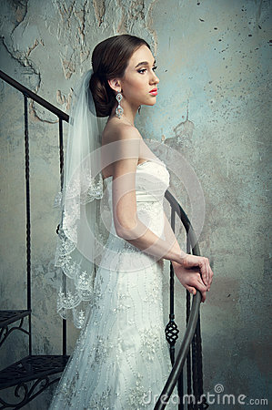 Free Bride In Wedding Dress And Veil Stock Photos - 48108963