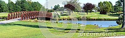 Bride over golf course lake
