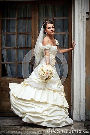 Free Bride Portrait Royalty Free Stock Image - 16722996