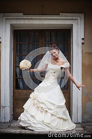 Free Bride Portrait Royalty Free Stock Photos - 16723028