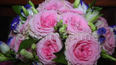The bride`s bouquet of pink and blue roses stock footage