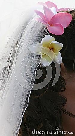 Bride s Hair, Veil and Frangipani Flowers