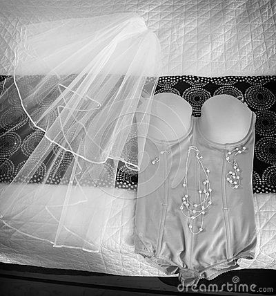 Bride s Wedding Veil with Jewelery and Underwear