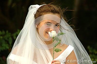 Bride shy
