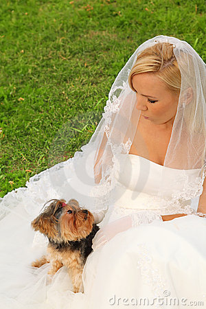 Bride sitting and dog sitting on dress