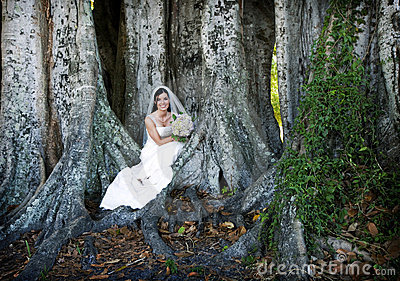 Bride sitting under tree