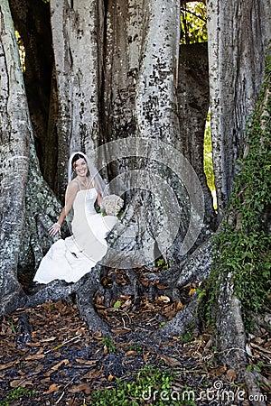 Bride sitting under tree