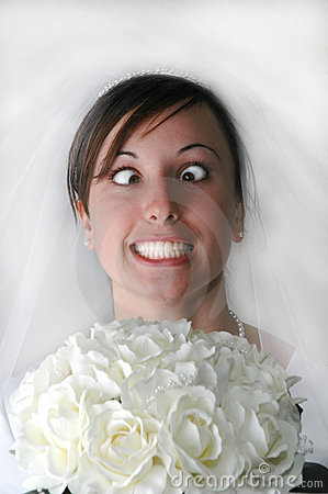 Free Bride Stress Stock Image - 1273721