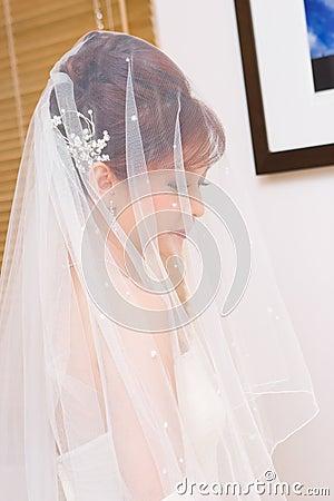 Bride to be hidden in veil
