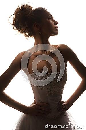 Brides silhouette