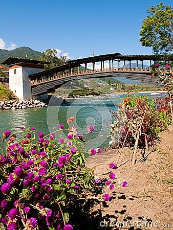 Free Bridge At Punakha Dzong And The Mo Chhu River In Bhutan Stock Photography - 45728332