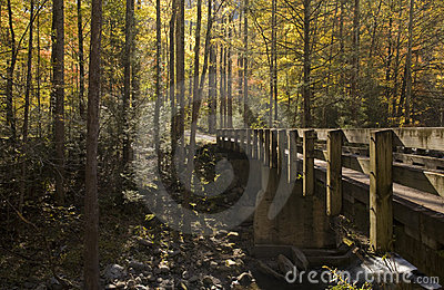 Bridge, Autumn, Tremont, Smokies NP