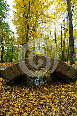 Bridge and color leaves in Autumn