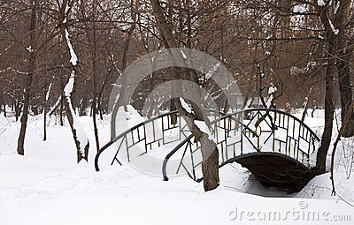 Bridge covered with snow - RAW format