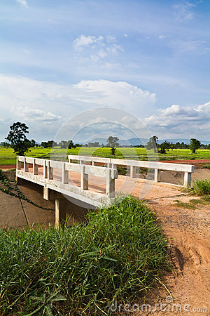 Bridge in farmland