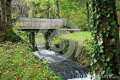 Bridge in forest on waterfall