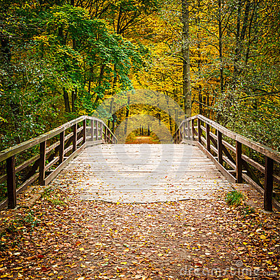 Free Bridge In Autumn Forest Royalty Free Stock Images - 32916519