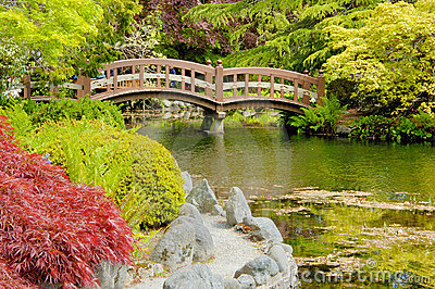 Bridge in japanese garden (2)