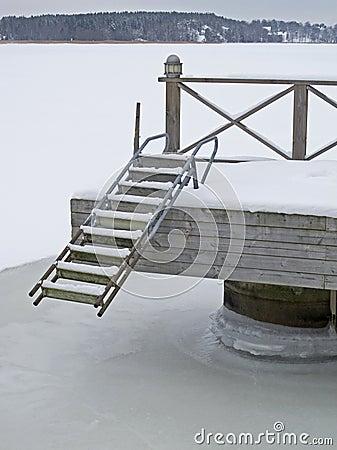 Bridge with ladder