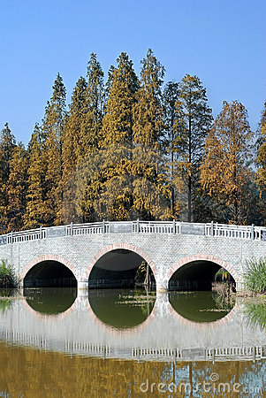 Bridge on the lake