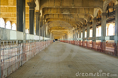 Bridge lower deck
