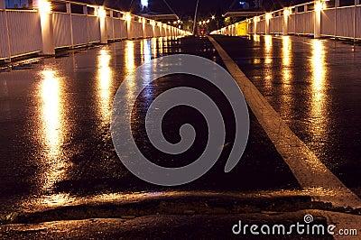 The bridge at night closeup wet asphalt light