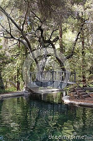 Free Bridge Over Reflecting Pond Royalty Free Stock Photography - 3821427