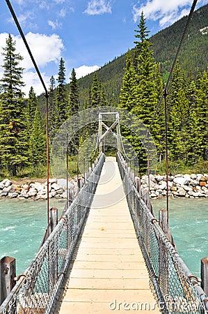 Bridge over Vermilion river at Kootenay National P