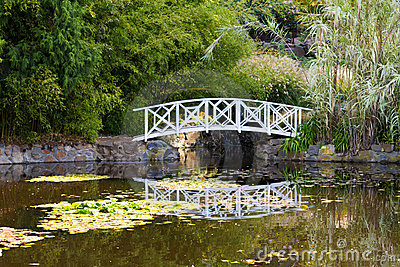 Bridge on pond