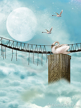 Bridge and swan