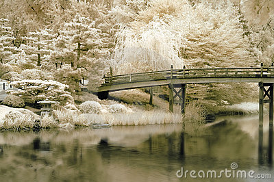 Bridge to a Japanese Garden