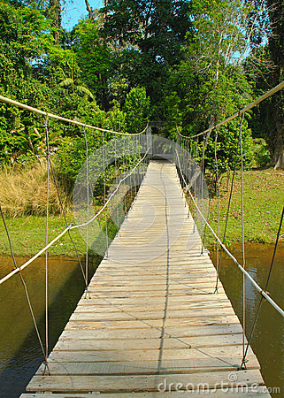 Bridge to the jungle in Thailand