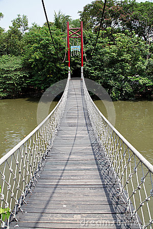 Bridge in the zoo.