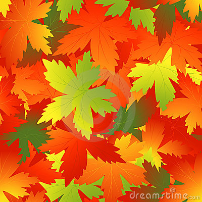Bright autumnal leaf background