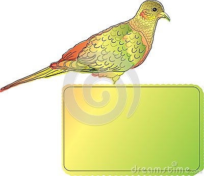 Bright bird with blank banner